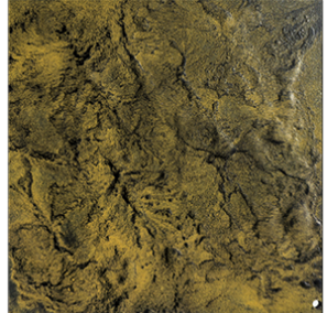Textured Gold Oxide